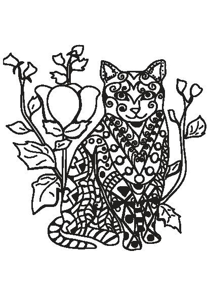 کتاب رنگ آمیزی برای بزرگسالان مجموعه تصاویر زیبای گربه ها