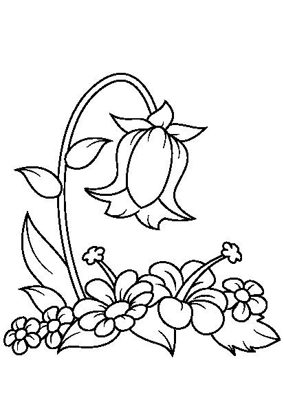 کتاب رنگ آمیزی گل ها , گل , بونه , نقاشی گل , نقاشی , هنر , سرگرمی