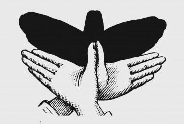 آموزش سایه بازی با دست (دست و سایه ۳)
