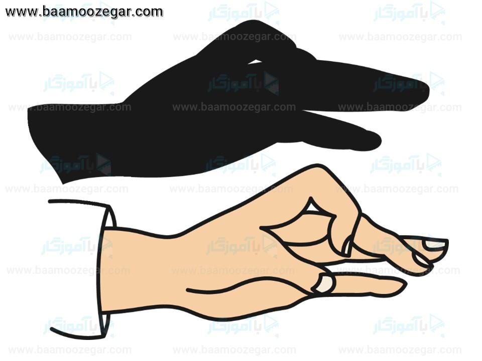 سایه بازی با دست (دست و سایه 2)