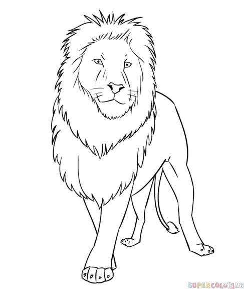 نقاشی سیاه سفید حیوان آموزش گام به گام نقاشی حیوانات (شیر کارتونی) - با آموزگار